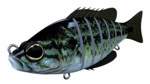 Biwaa Seven 5′ Real Bass